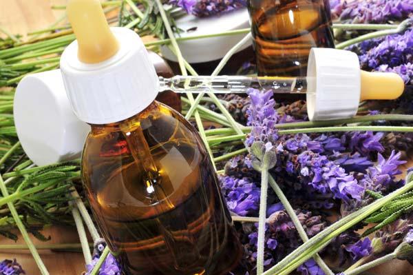 Dierenarts Geens Duffel - homeopathie voor honden en katten